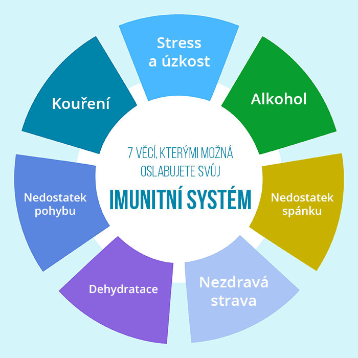Image result for imunitní systém