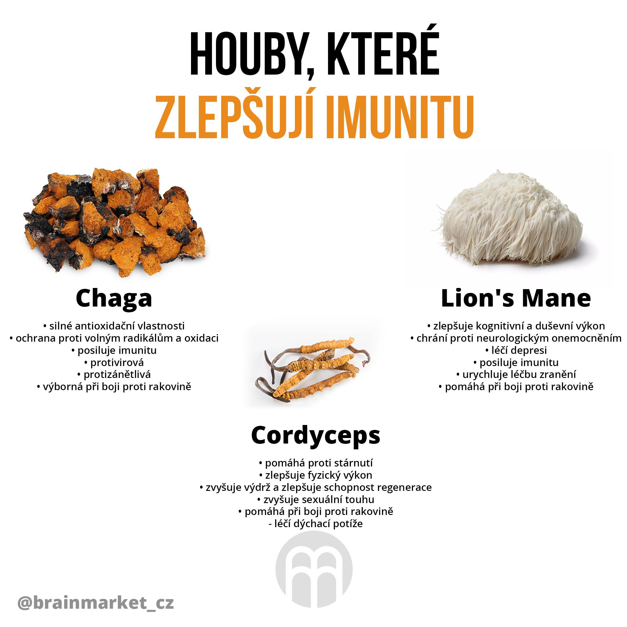 houby-ktere-zlepsuji-imunitu-brainmarket (1)