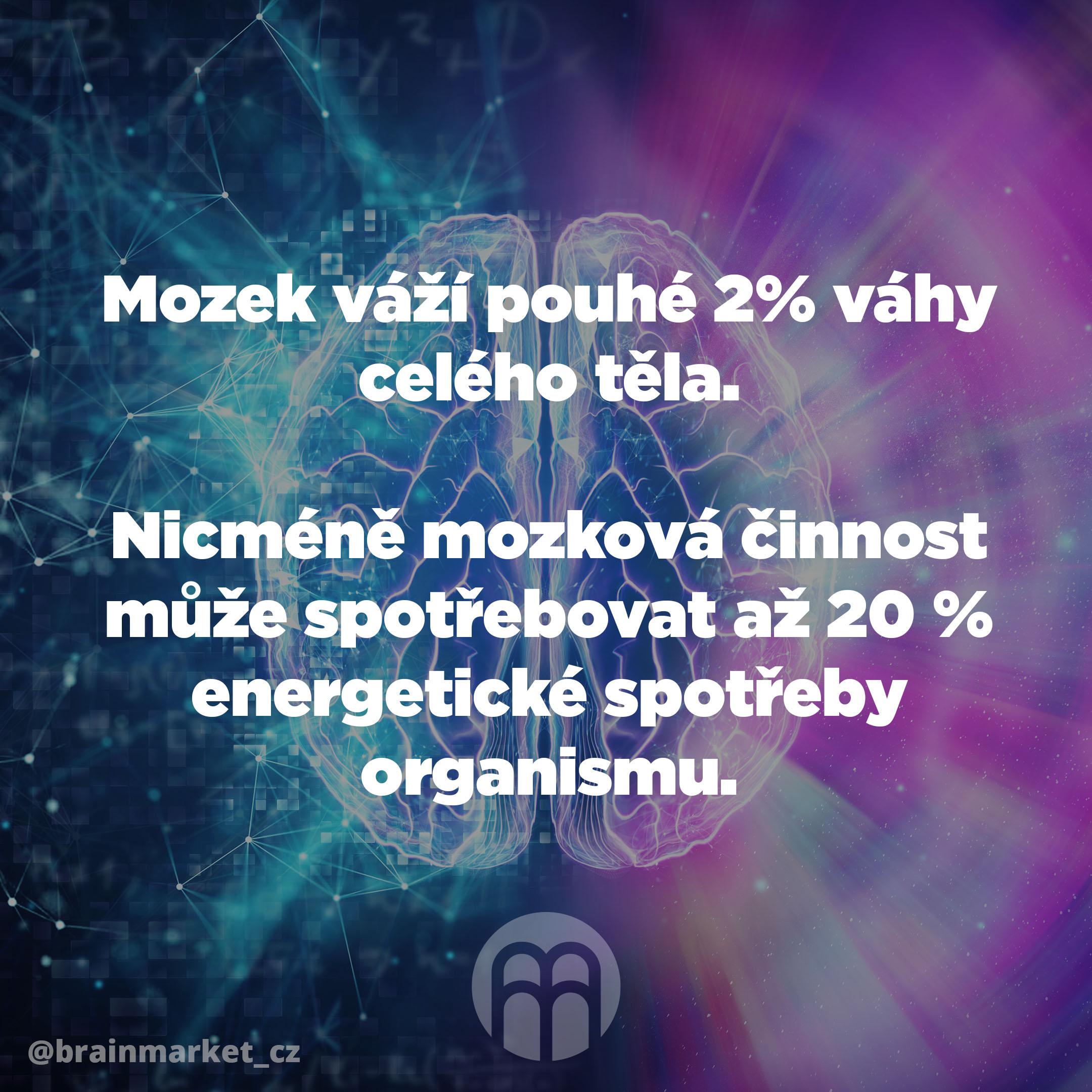 mozek_vazi_pouhe_2_procenta