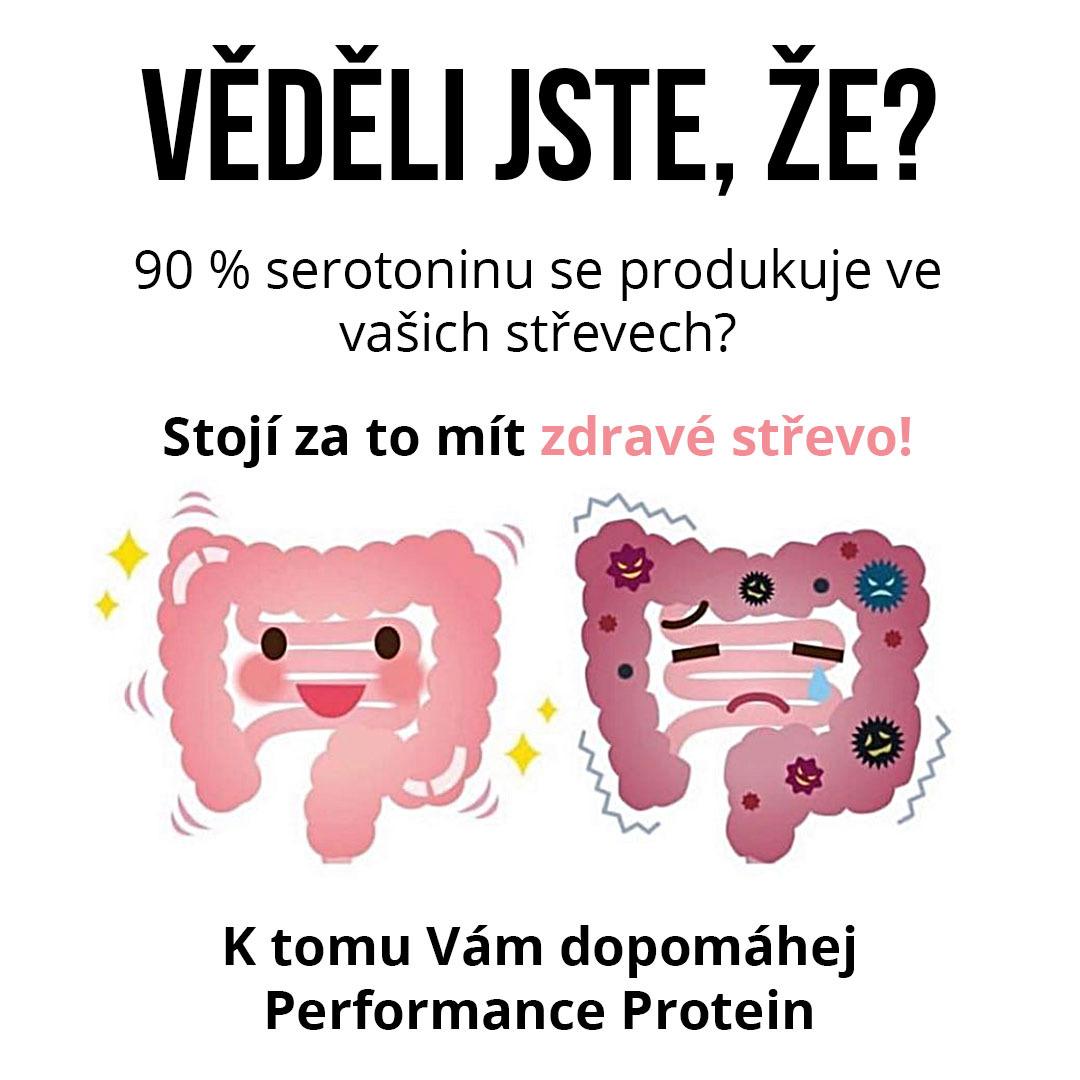 zdrave-strevo (1)