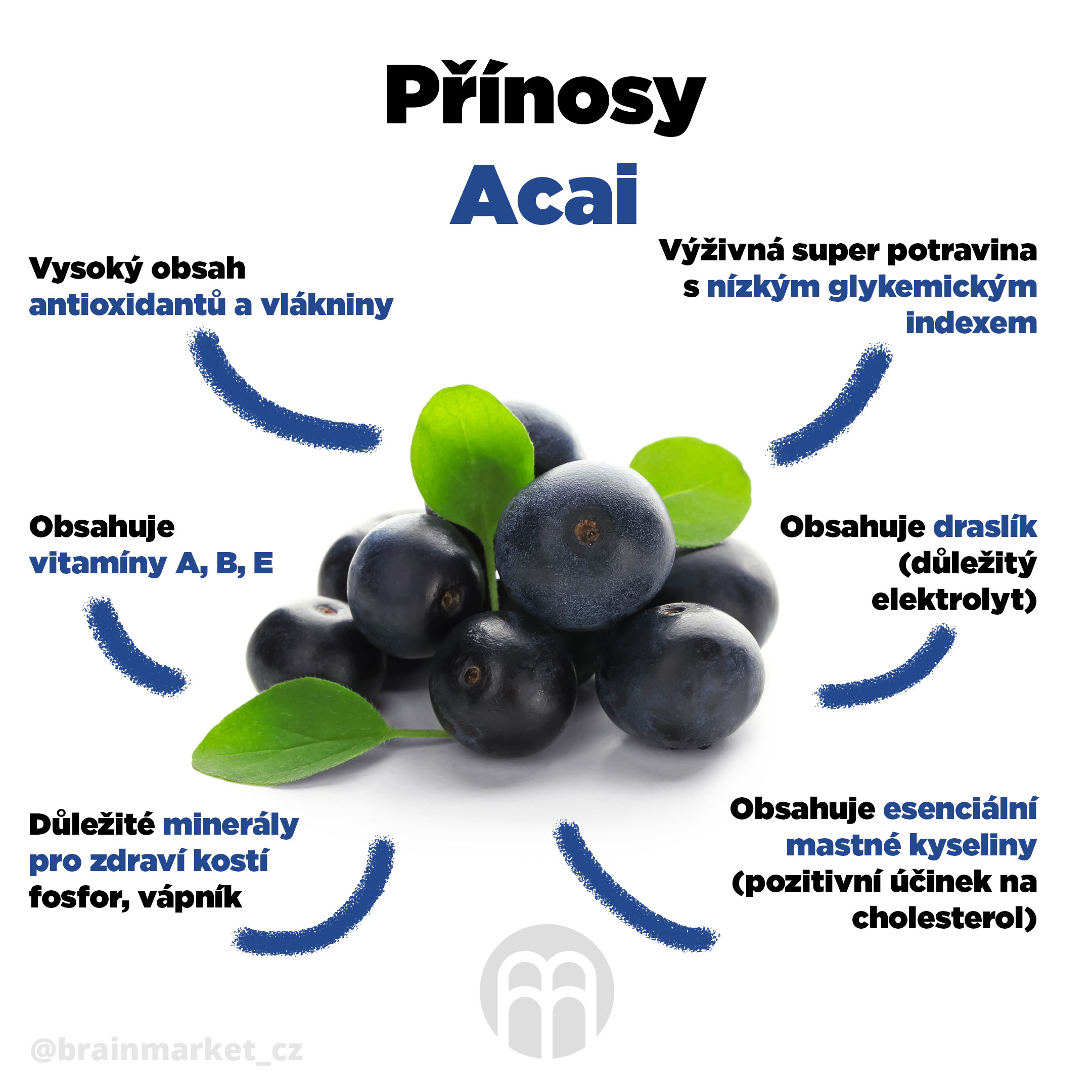 prinosy-acai-infografika-brainmarket-cz